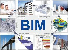 BIM 6