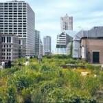 """Le guide gratuit """" Pratiques écologiques dans les espaces verts de mon immeuble """""""